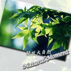 開放大自然9