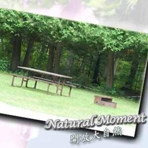 開放大自然11
