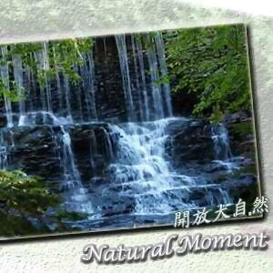開放大自然12