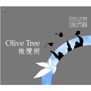 純真年代-橄欖樹