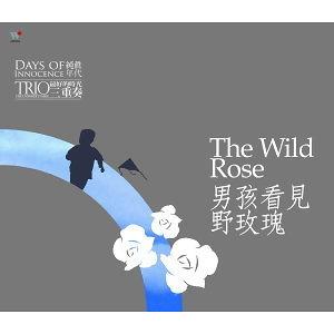 純真年代-男孩看見野玫瑰