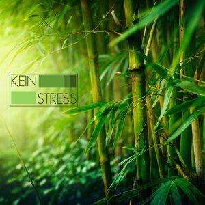 Kein Stress - Meditationsmusik mit Meeresrauschen und Entspannungsmusik für Progressive Muskelentspannung und Autogenes Training