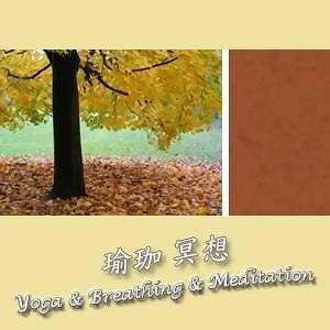 瑜珈冥想15