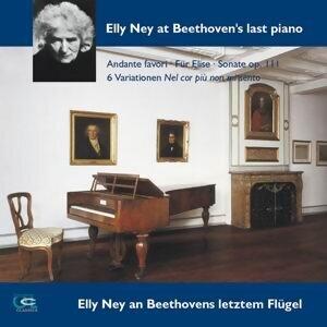 Ludwig van Beethoven: Andante Favori, Für Elise, Sonata Op. 111