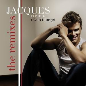 I Won't Forget [The Remixes]