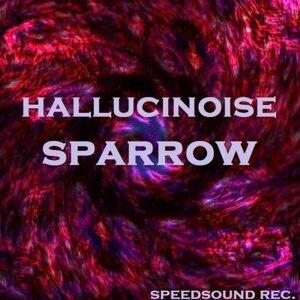 Hallucinoise