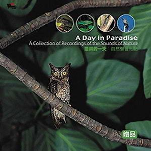 蘭嶼的一天 (A Day in Paradise)