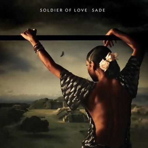 Soldier Of Love (愛的戰士)