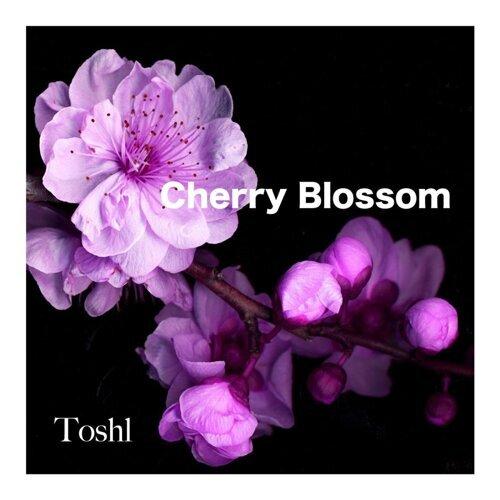CHERRY BLOSSOM (Cherry Blossom)