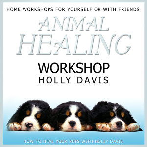 Animal Healing Workshop