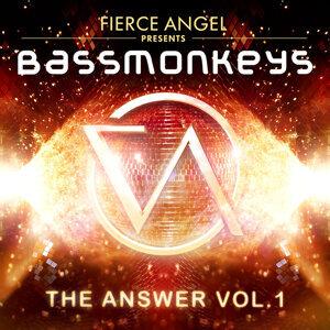 Fierce Angel Presents Bassmonkeys - The Answer, Vol. 1