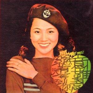 鳳飛飛金唱片第八集