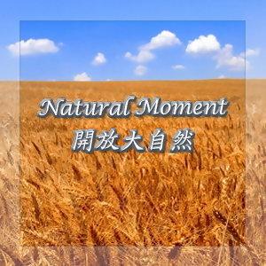 開放大自然18