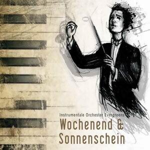 Wochenend und Sonnenschein - instrumentale Orchester Evergreens