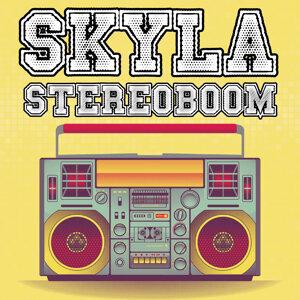 Stereoboom
