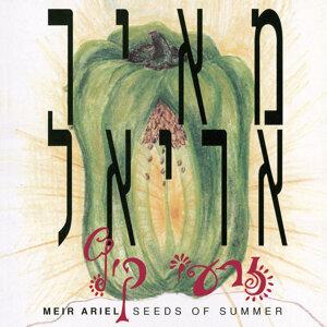 זרעי קיץ