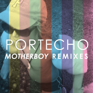 Motherboy Remixes