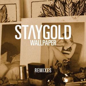 Wallpaper - Gregor Salto Remix