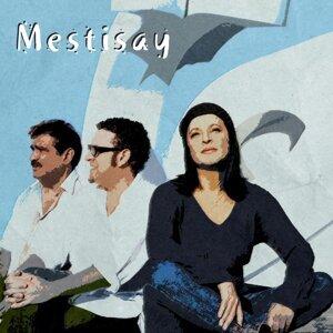 Mestisay