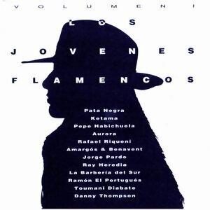 Los Jóvenes Flamencos