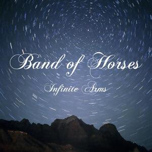 Infinite Arms(無限供武)