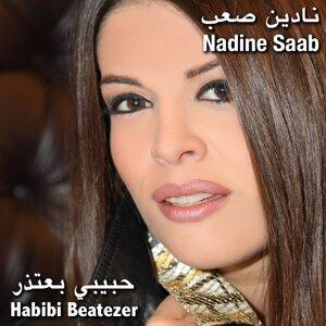 Habibi Beatezer