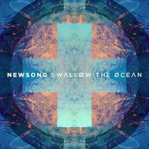 Swallow the Ocean