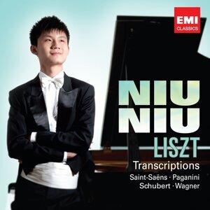 Liszt Transcriptions