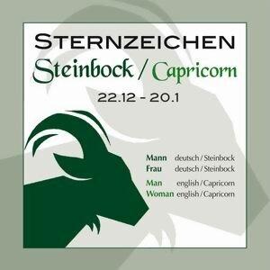 Sternzeichen Steinbock 22.12.-20.1.