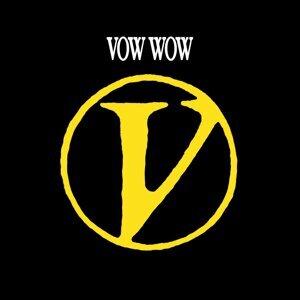 V (V)