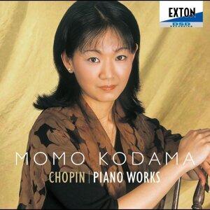 Chopin : Piano Works (ショパン : ピアノ作品集)