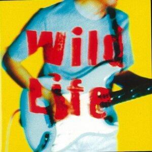 Wild Life (Wild Life)