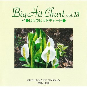 Big Hit Chart Vol.13 (Big Hit ChartVol.13)
