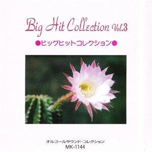 Big Hit Collection Vol 3 (Big Hit Collection Vol 3)