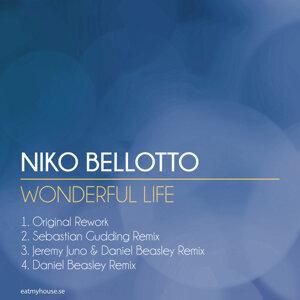Wonderful Life EP