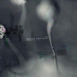 The Digital Anatomist Project