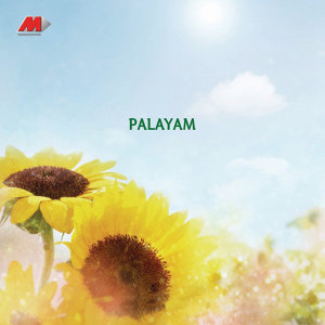 Palayam (Original Motion Picture Soundtrack)