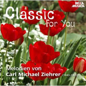 Classic for You: Ziehrer: Melodien