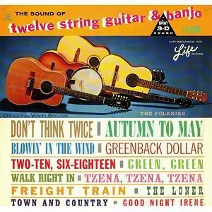 The Sound Of Twelve String Guitar & Banjo