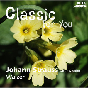 Classic for You: Strauss: Walzer