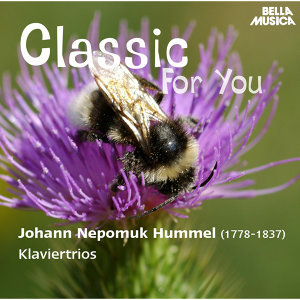 Classic for You: Hummel: Klaviertrios, Op. 12, Op. 22, Op. 35, Op. 65