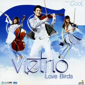 VieTrio Love Birds (Cool)