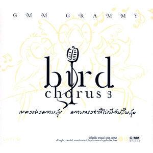 BIRD CHORUS 3
