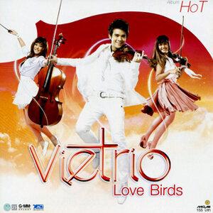 VieTrio Love Birds (Hot)