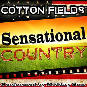 Cotton Fields: Sensational Country
