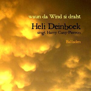 Waun der Wind si draht