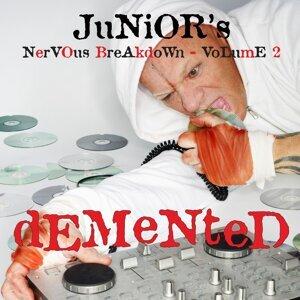 Junior's Nervous Breakdown 2: Demented