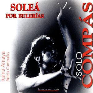 Flamenco Sólo compás. Soleà por Bulerias