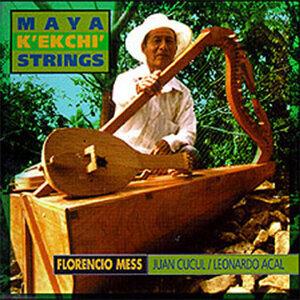 Maya K'ekchi' Strings