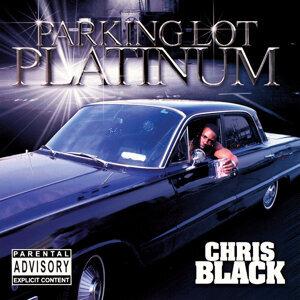 Parking Lot Platinum
